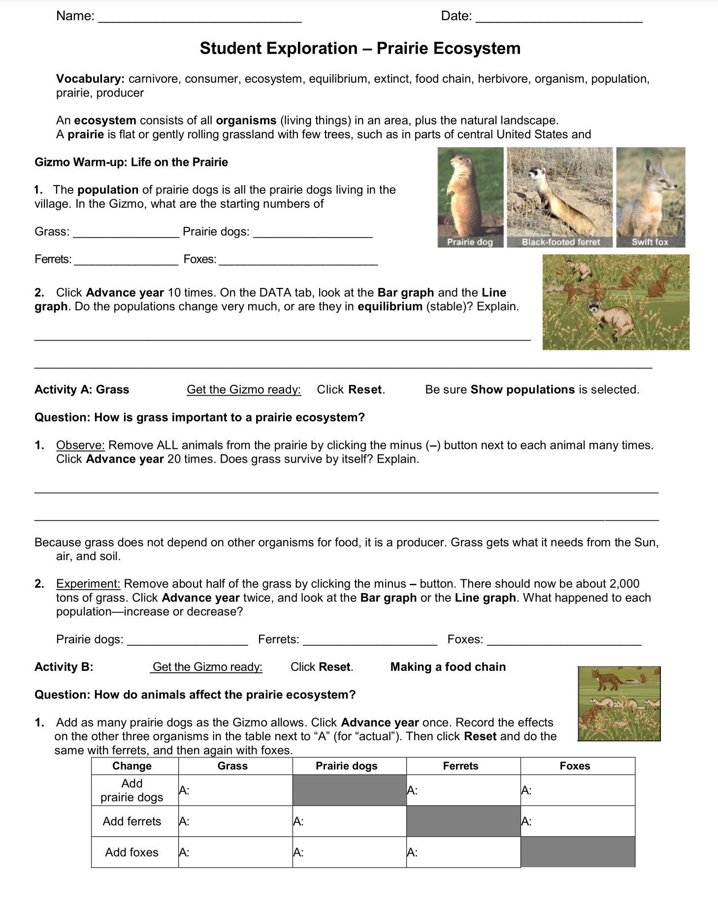 3rd Grade Ecosystem Worksheets Ecosystem Student Exploration Worksheet Go to Explore