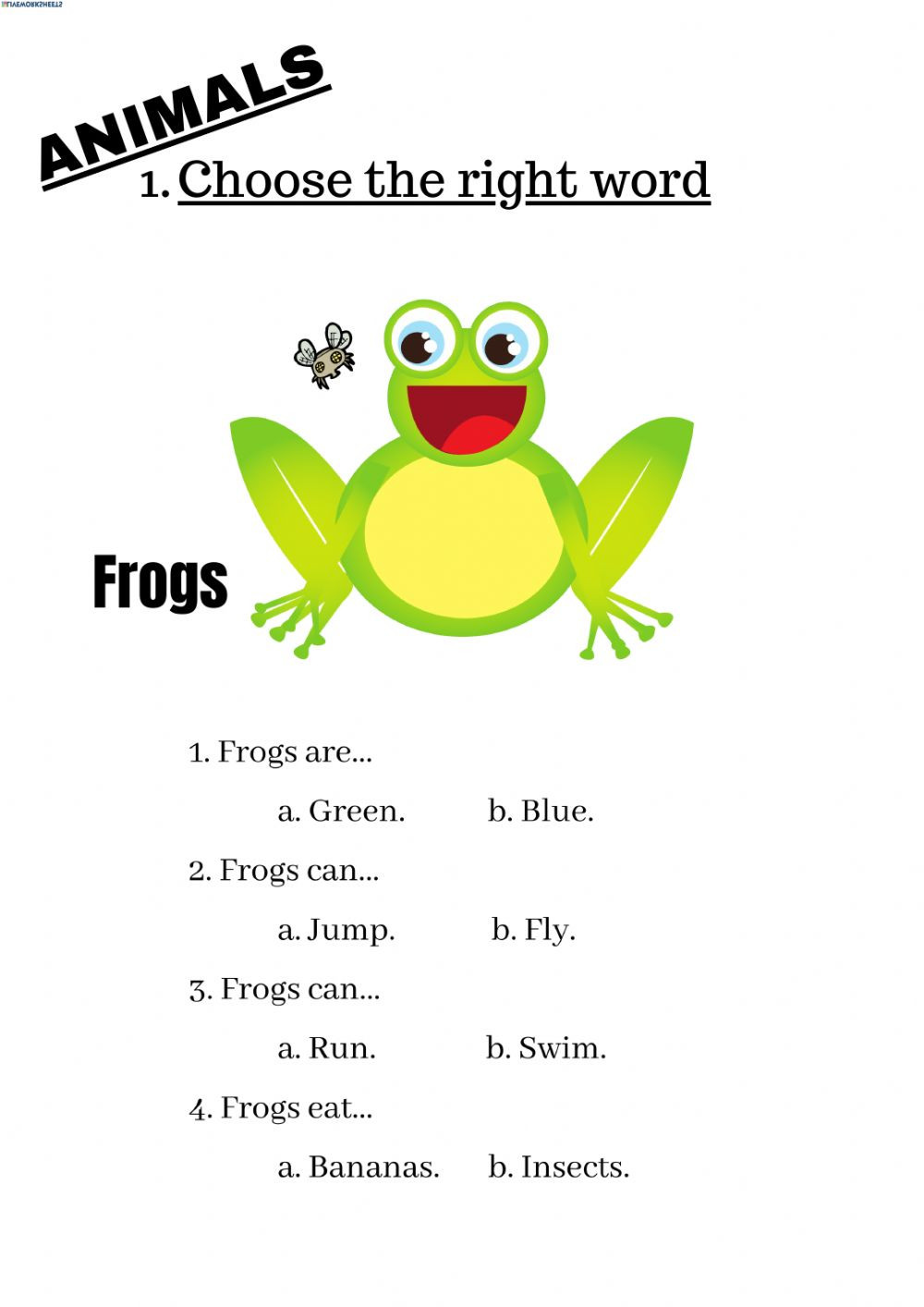Amphibian Worksheets for Second Grade Animals Interactive Worksheet