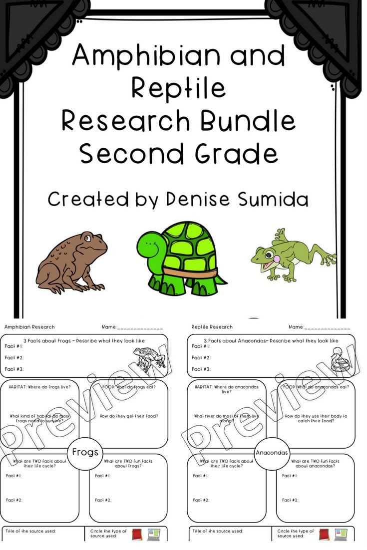 Amphibian Worksheets for Second Grade This is A Great Note Taking Lesson to Teach About Reptiles