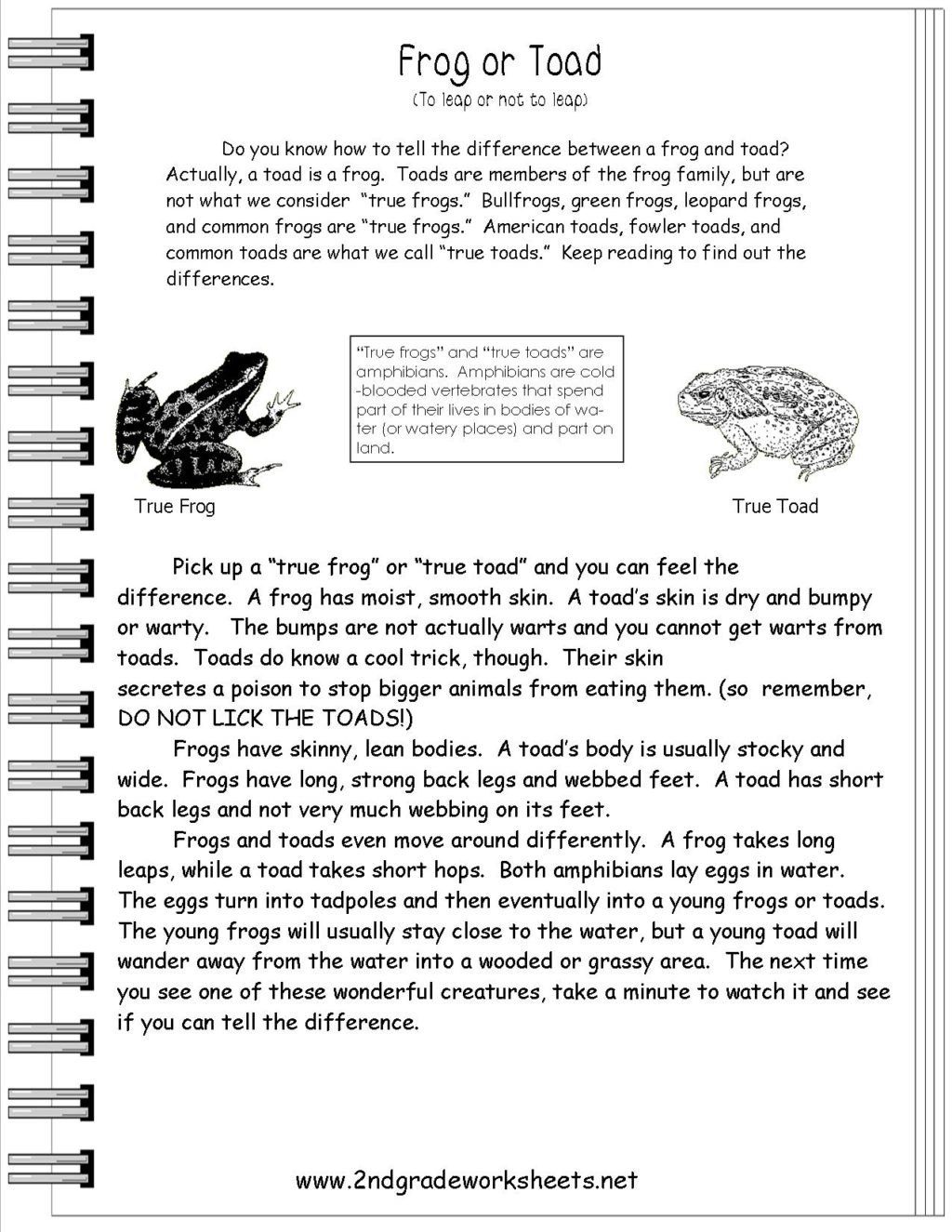 Amphibian Worksheets for Second Grade Worksheet Frogortoad 2nd Grade Passage Worksheet Second