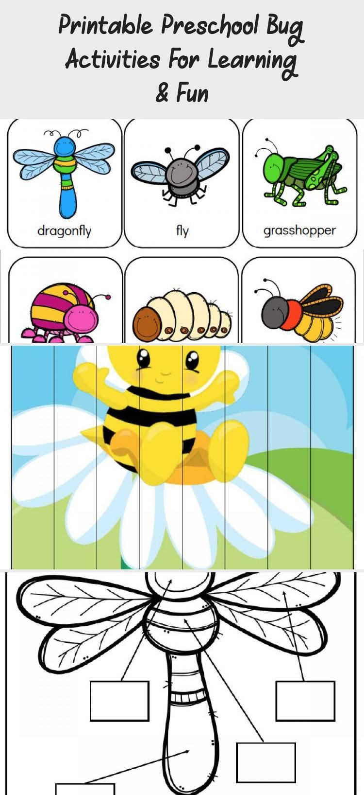 Bug Worksheets for Preschool Printable Preschool Bug Activities for Learning & Fun In