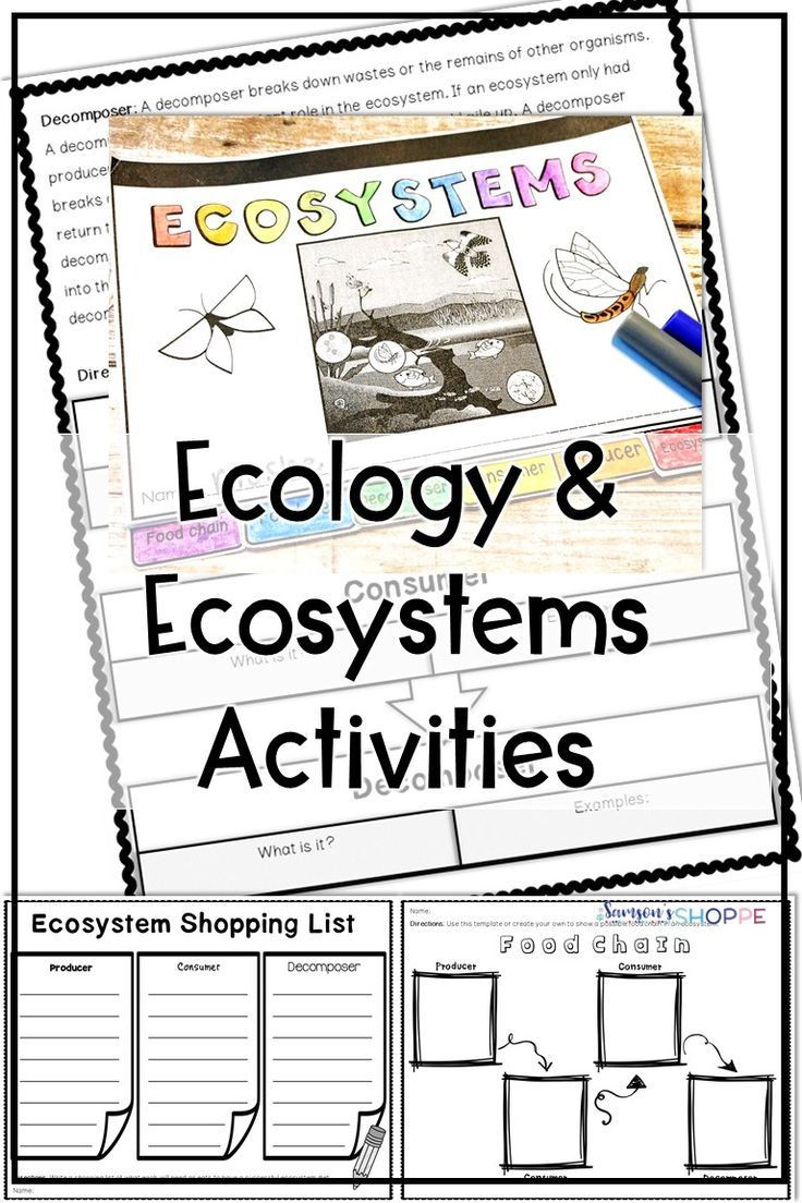 Ecology Worksheets Middle School Ecology and Ecosystem Reading and Activity