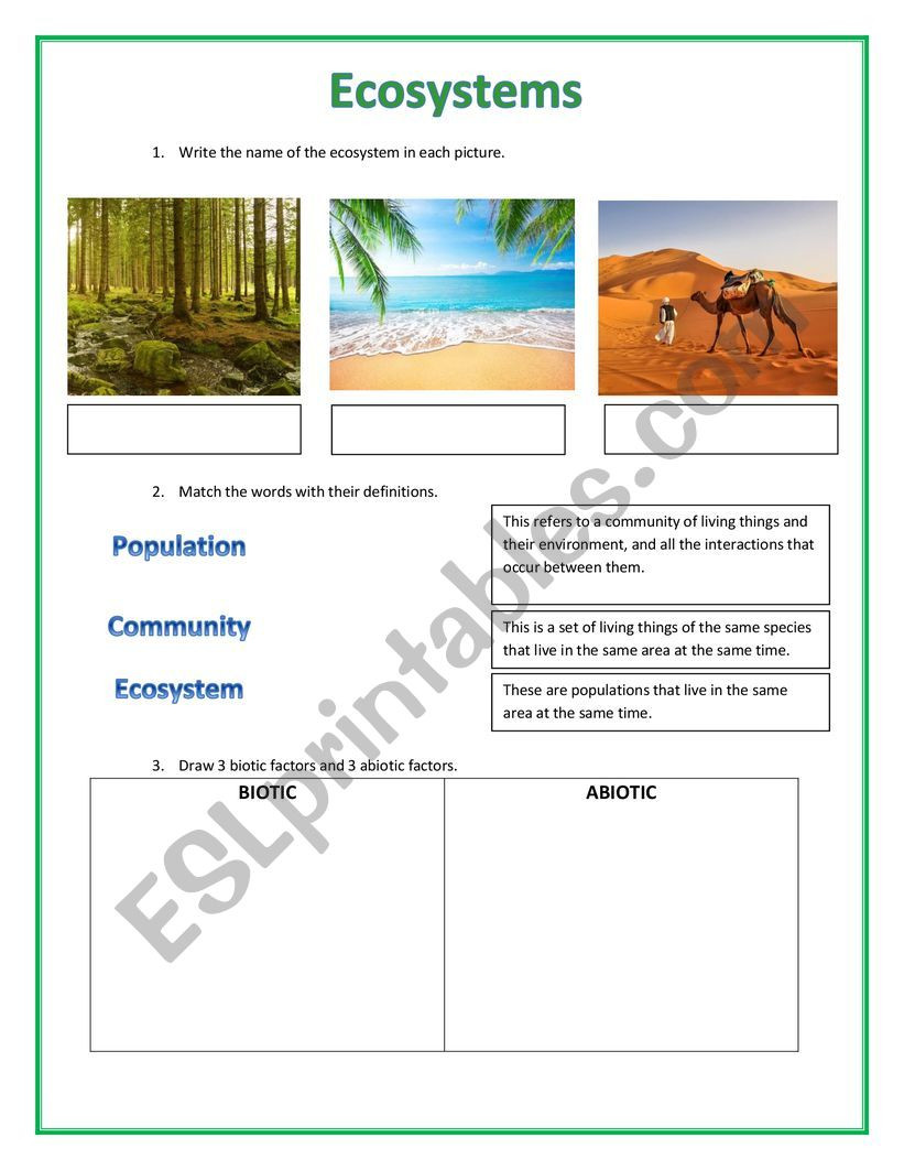 Ecosystem Worksheets 4th Grade Ecosystems Esl Worksheet by Selma Karamy