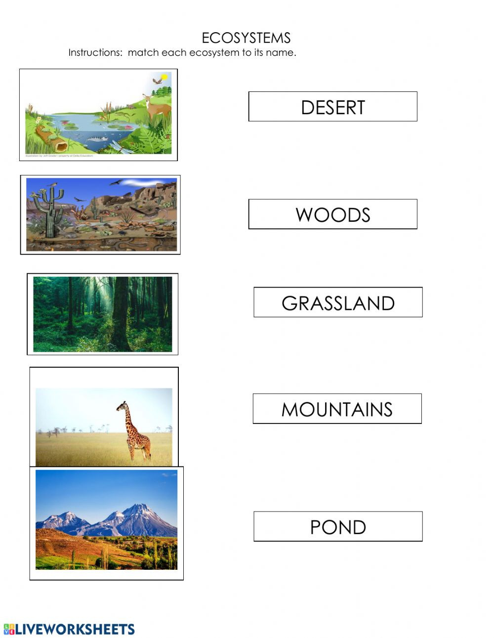 Ecosystem Worksheets 4th Grade Ecosystems Interactive Worksheet