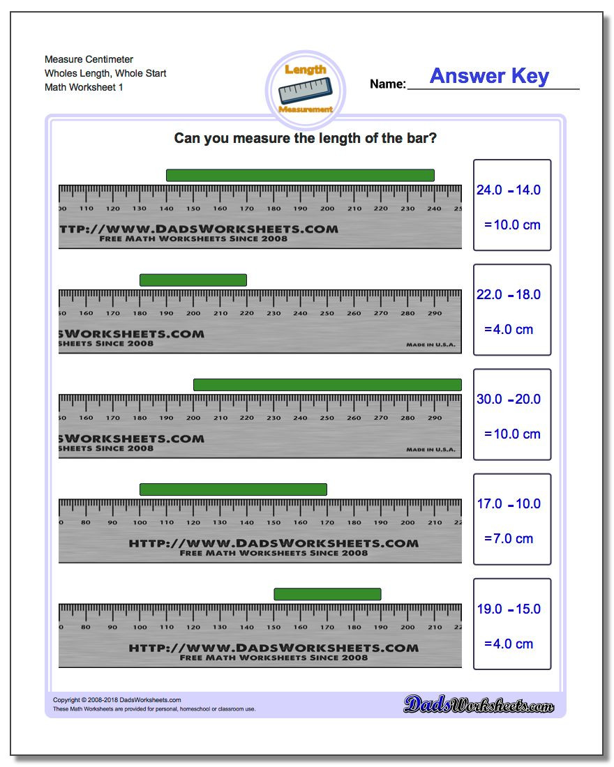 Fifth Grade Measurement Worksheets Metric Measurement
