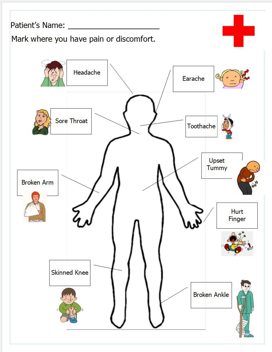 Free Printable Human Anatomy Worksheets Free Printable Worksheet for Doctor S Office Pretend Play