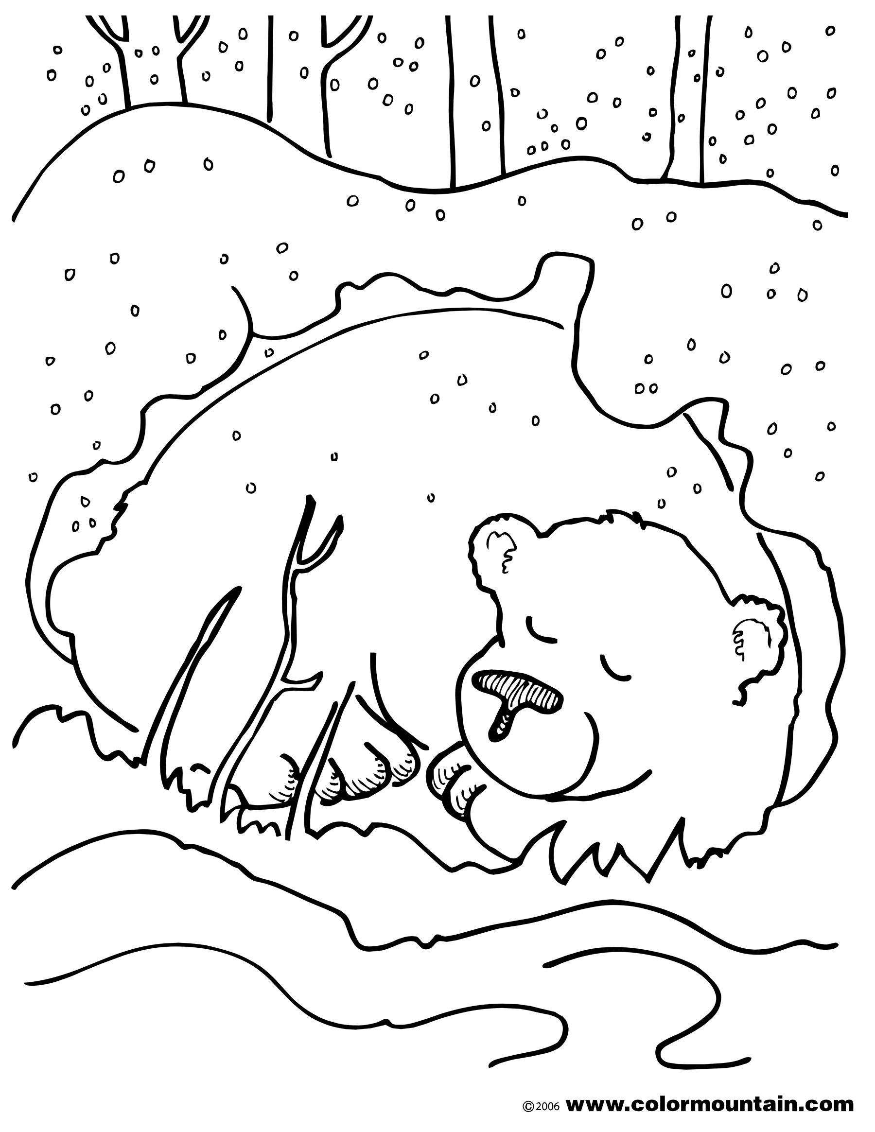 Hibernation Worksheets for Preschool Hibernation Bear Coloring Page