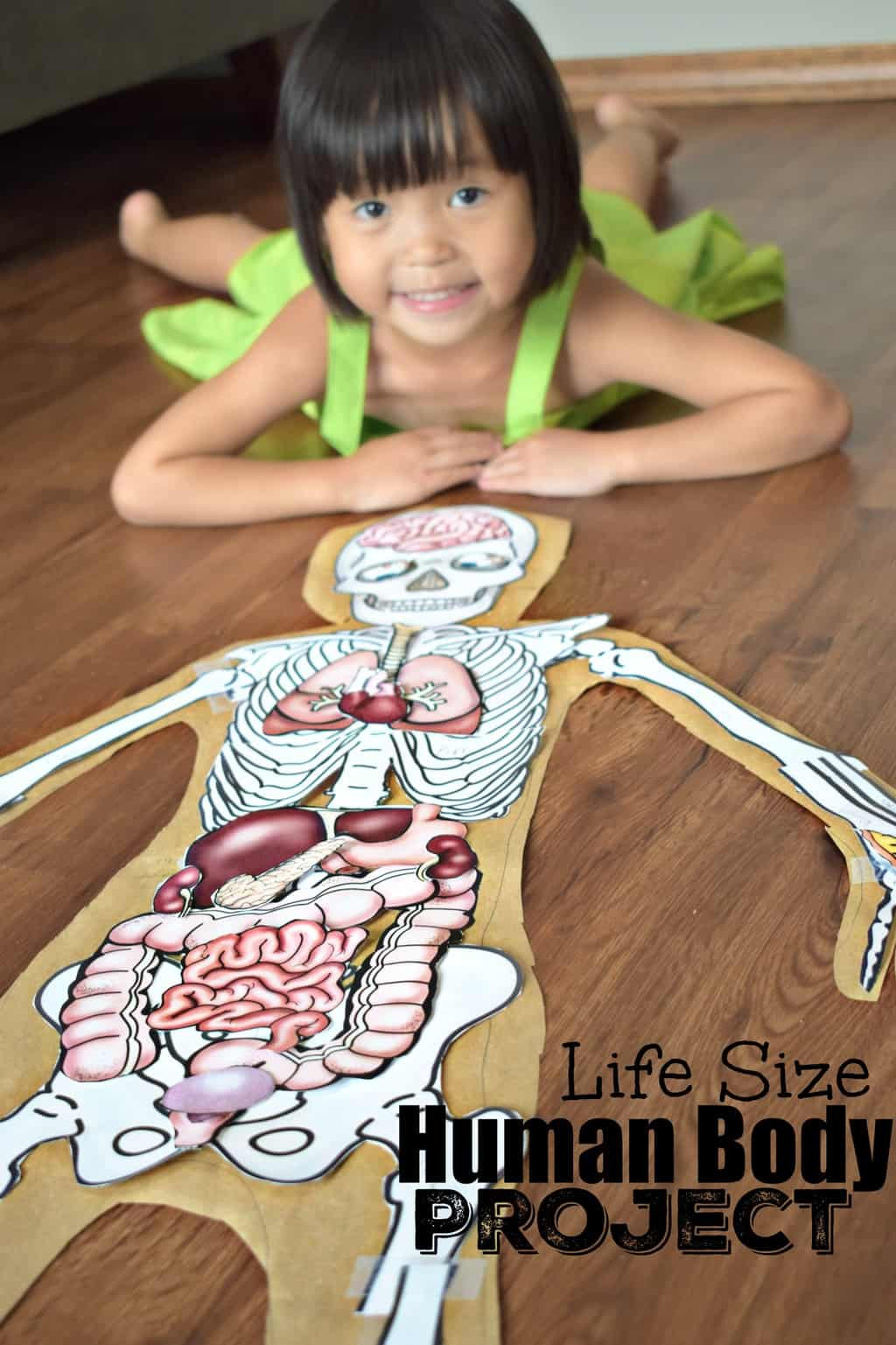 Human Body Worksheets Middle School Human Body Project with Free Printables