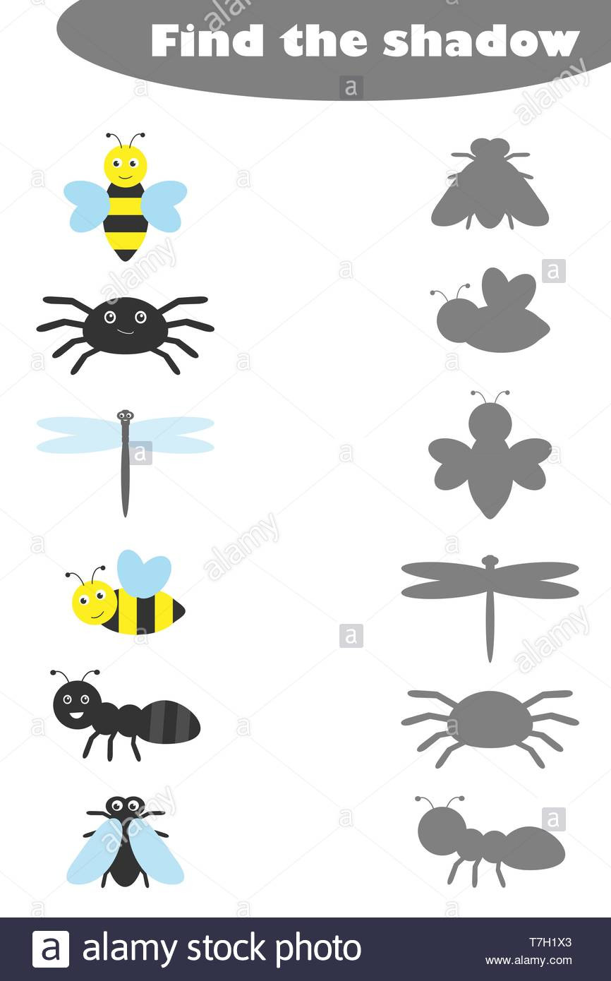 Insect Worksheets for Preschoolers Find the Shadow Game with Insects for Children In Cartoon
