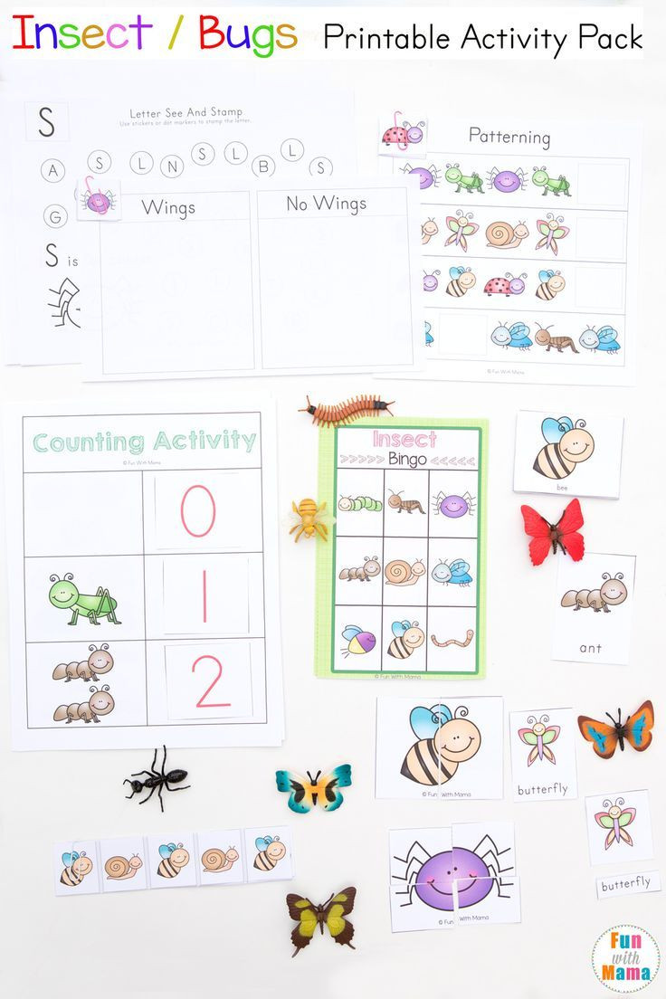 Insect Worksheets for Preschoolers Insects Bugs Printable Activity Pack for Preschool Pre K