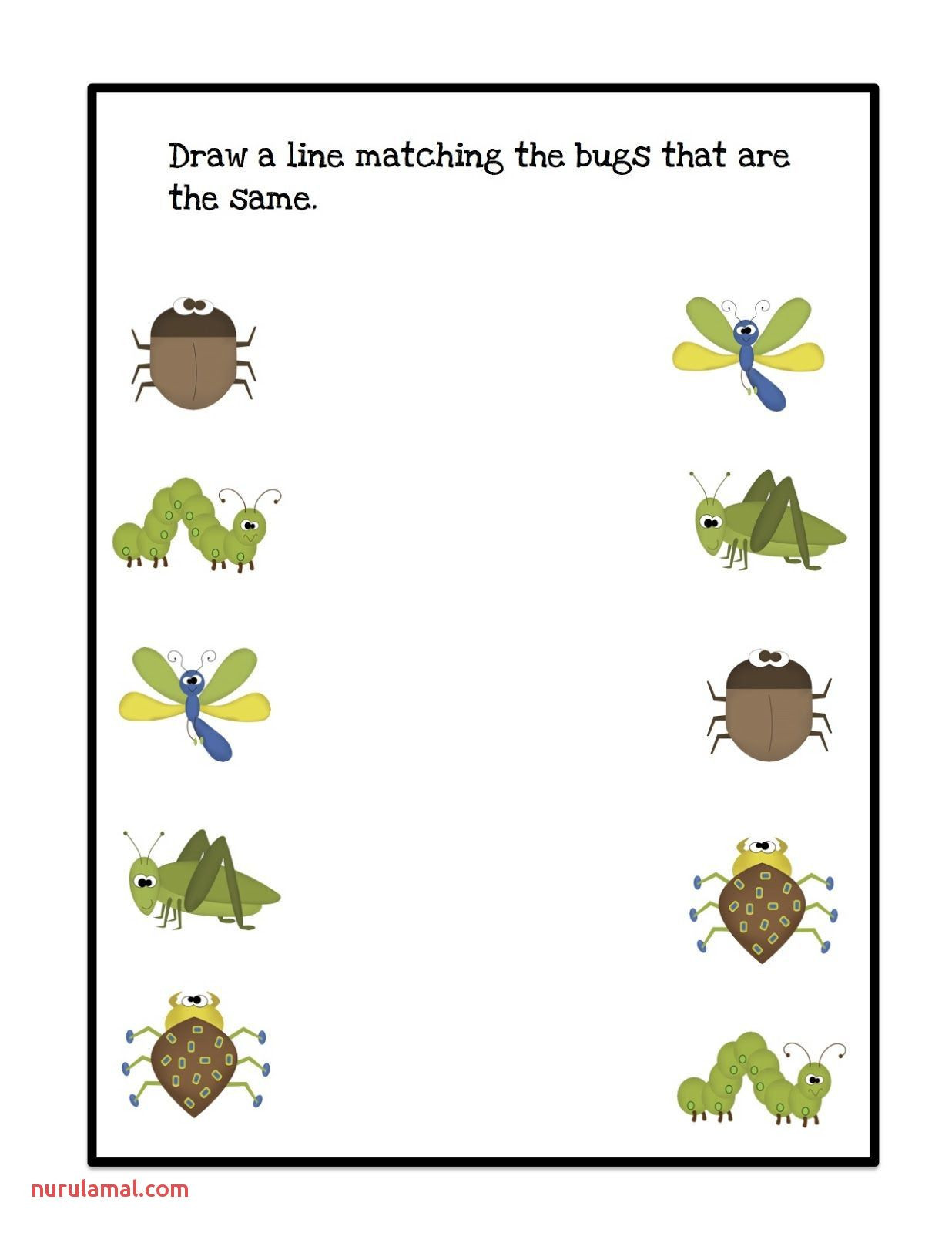 Insect Worksheets for Preschoolers Pin On Preschool Prek