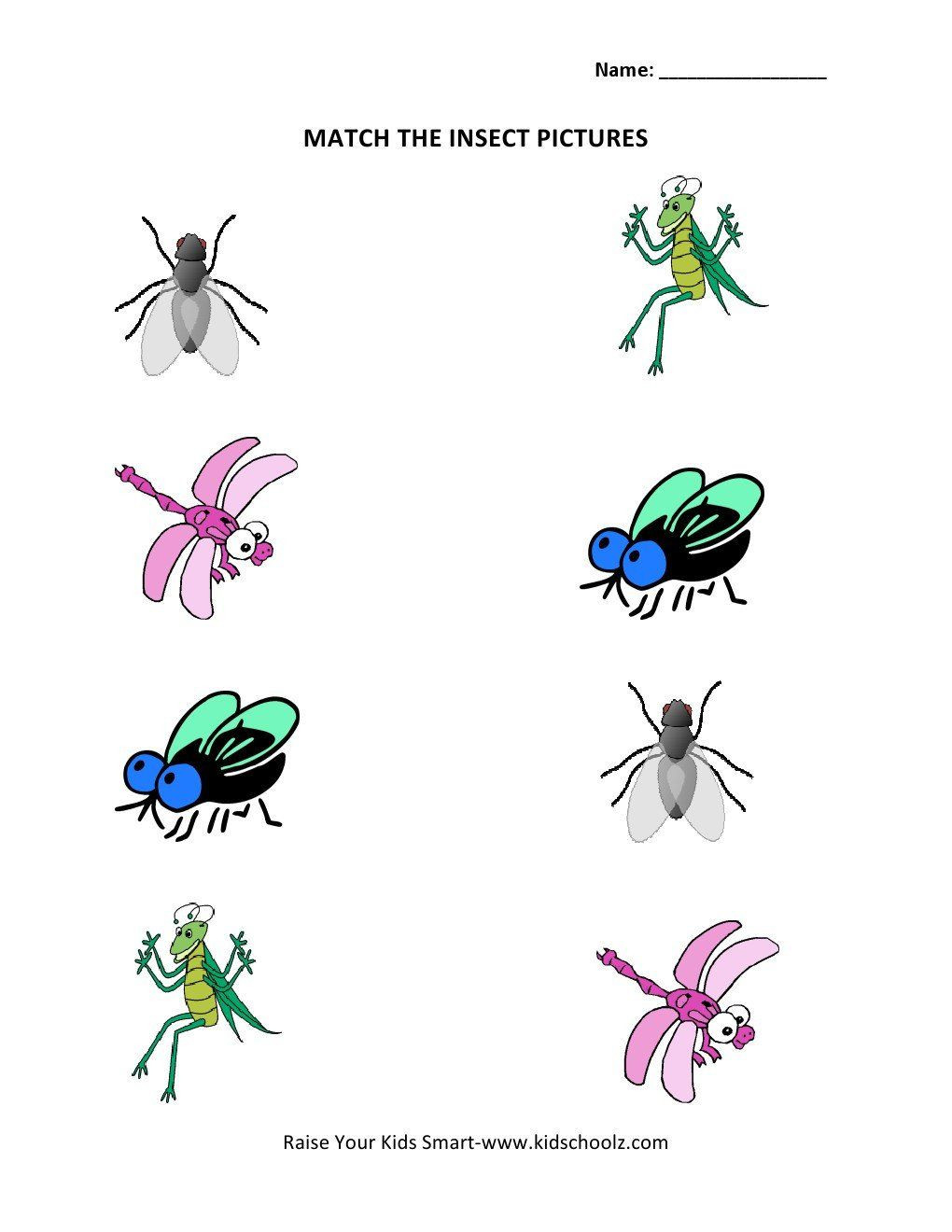 Insect Worksheets for Preschoolers Pin On Printable Worksheet for Kindergarten