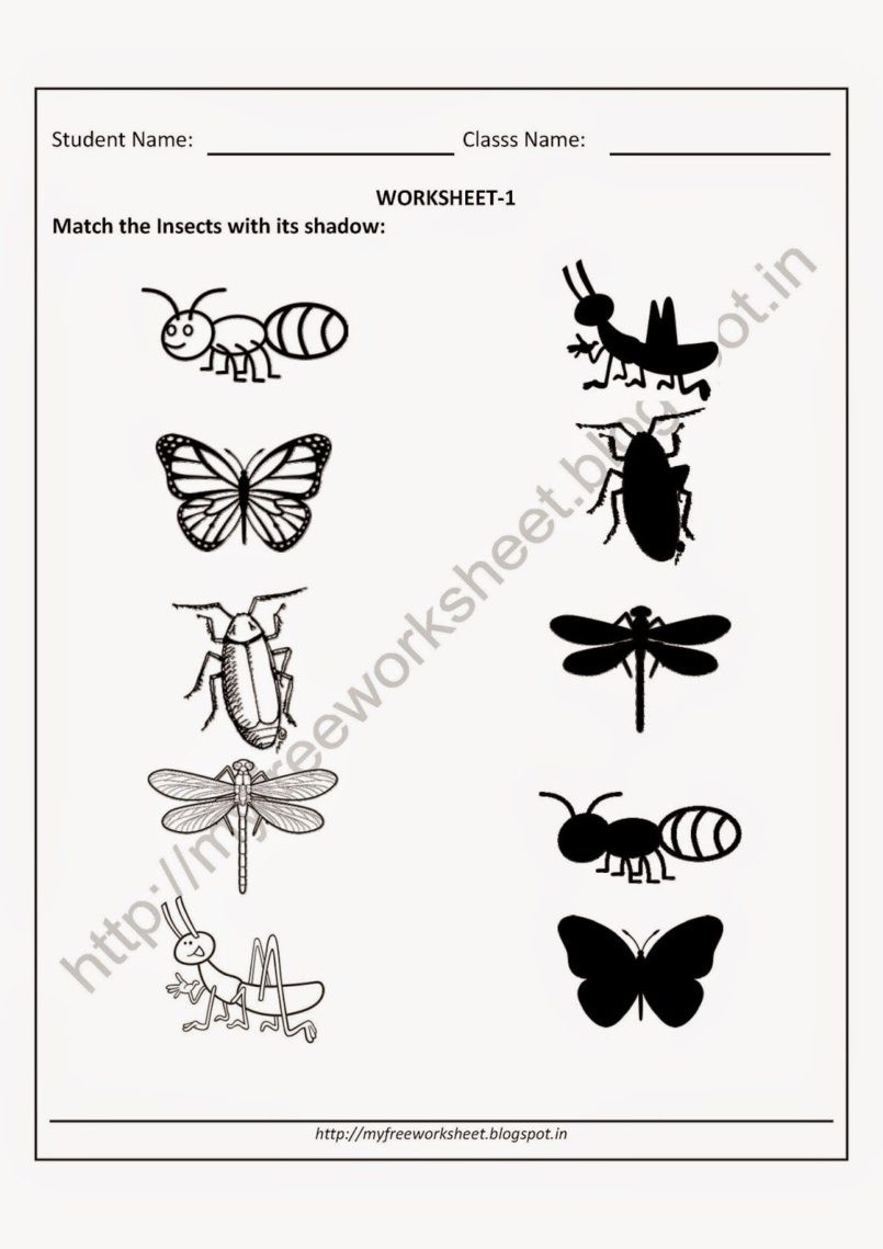 Insect Worksheets for Preschoolers Worksheet Kindy Kids Games Pre Writing Skills Worksheet