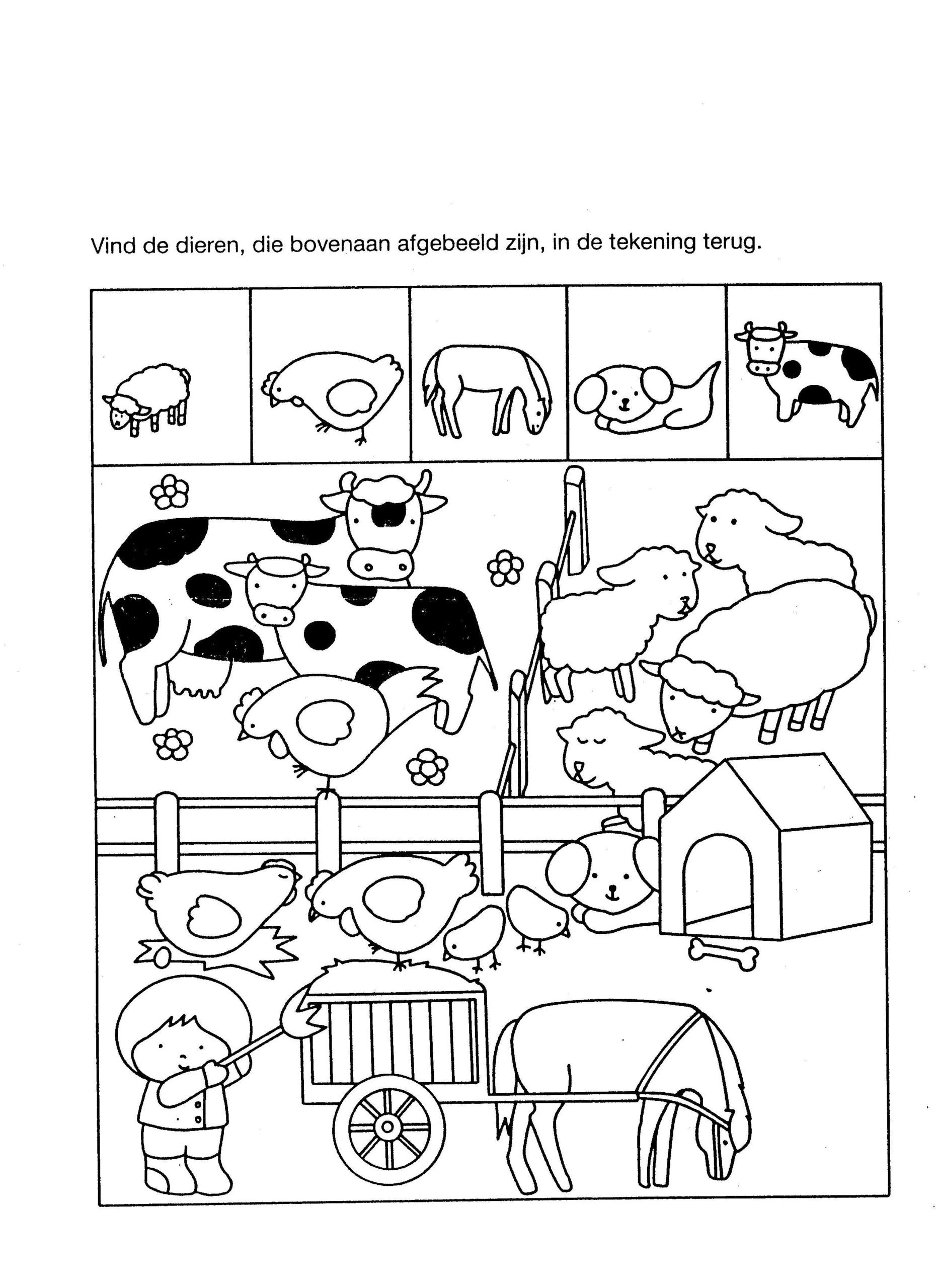 Kindergarten Math sorting Worksheets Math Worksheet Classroom Worksheets for Kindergarten