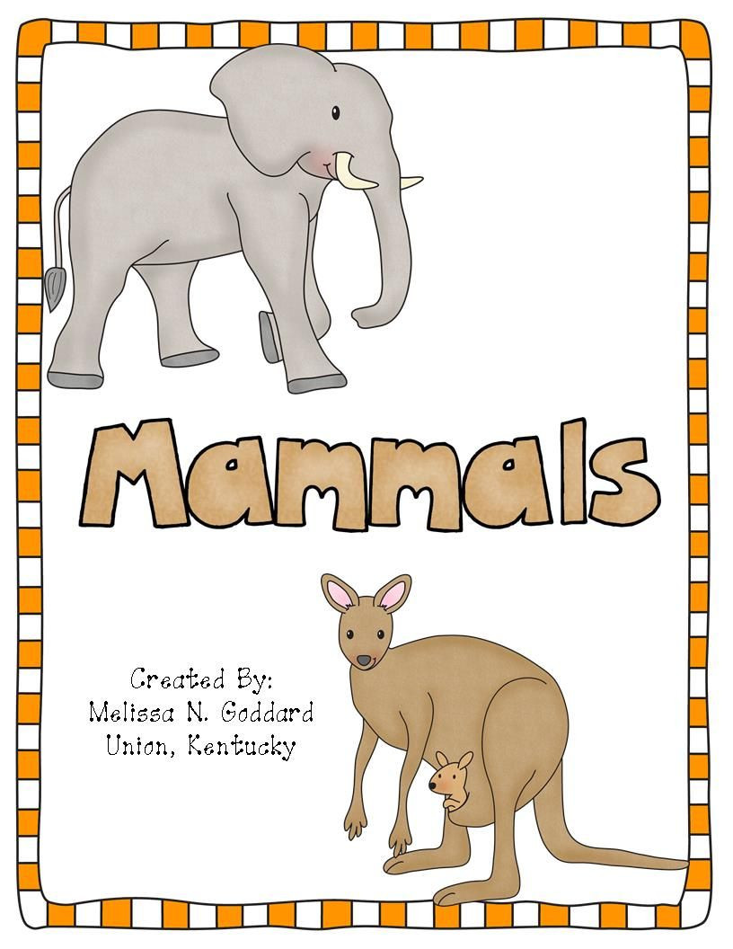 Mammal Worksheets First Grade Mammals Activity Pack