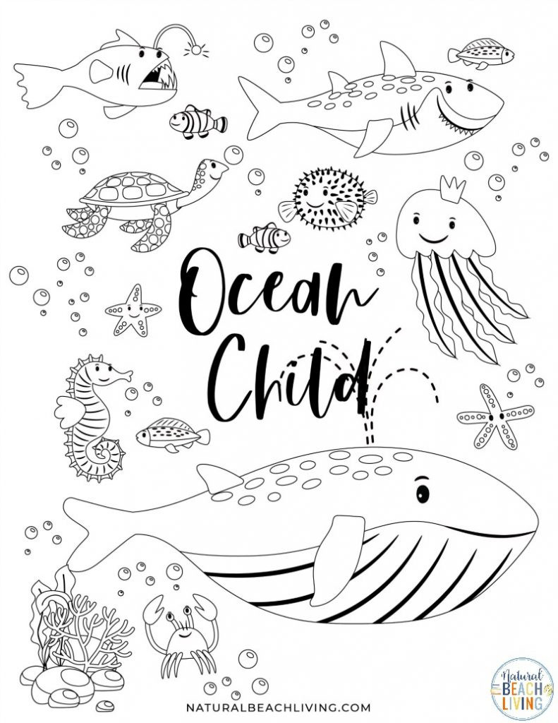 Ocean Worksheets for Preschool Free Printable Ocean Activity Pages for Preschoolers and