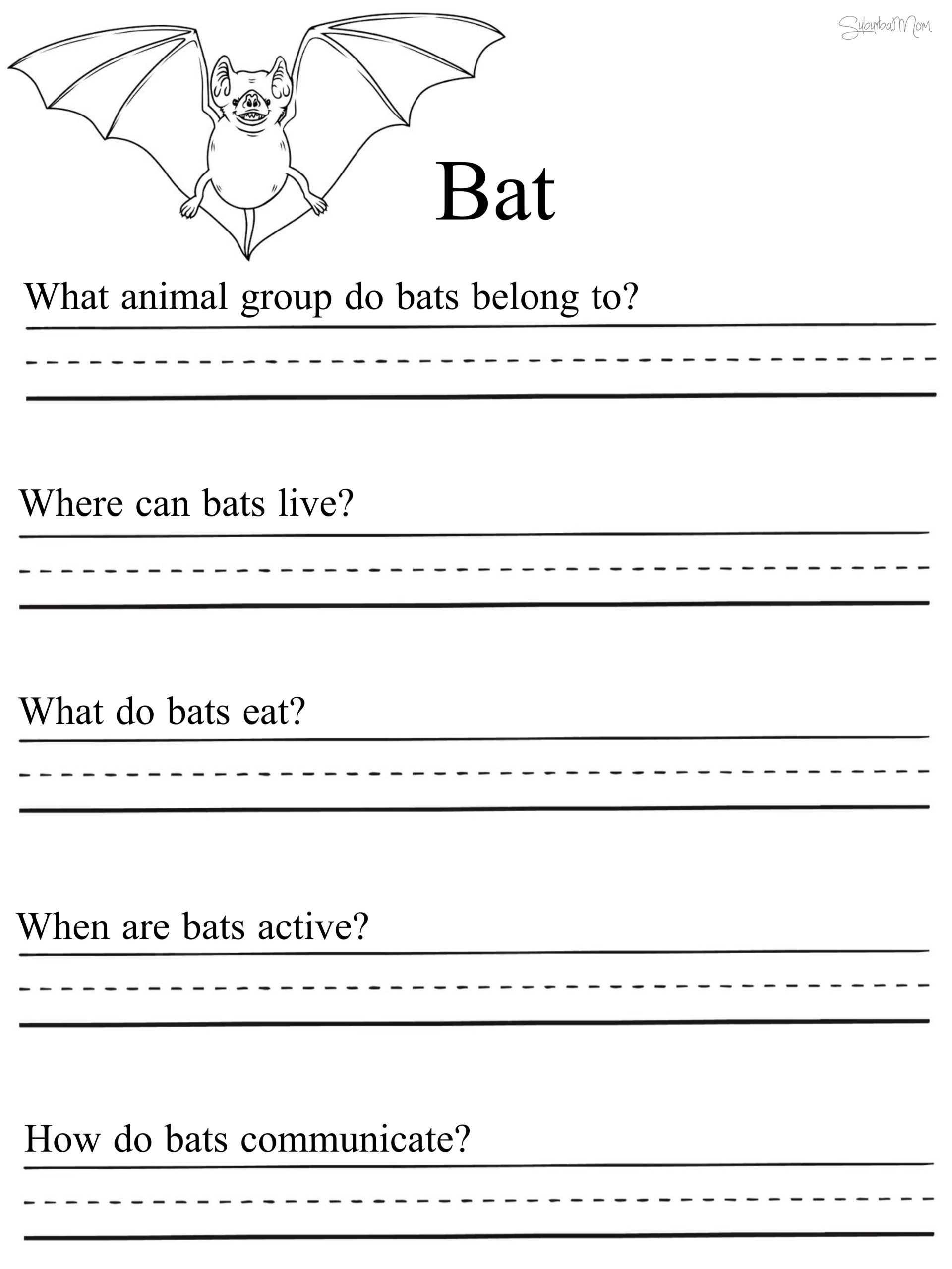 Science Worksheet 1st Grade Math Worksheet 43 Stunning 1st Grade Science Worksheets
