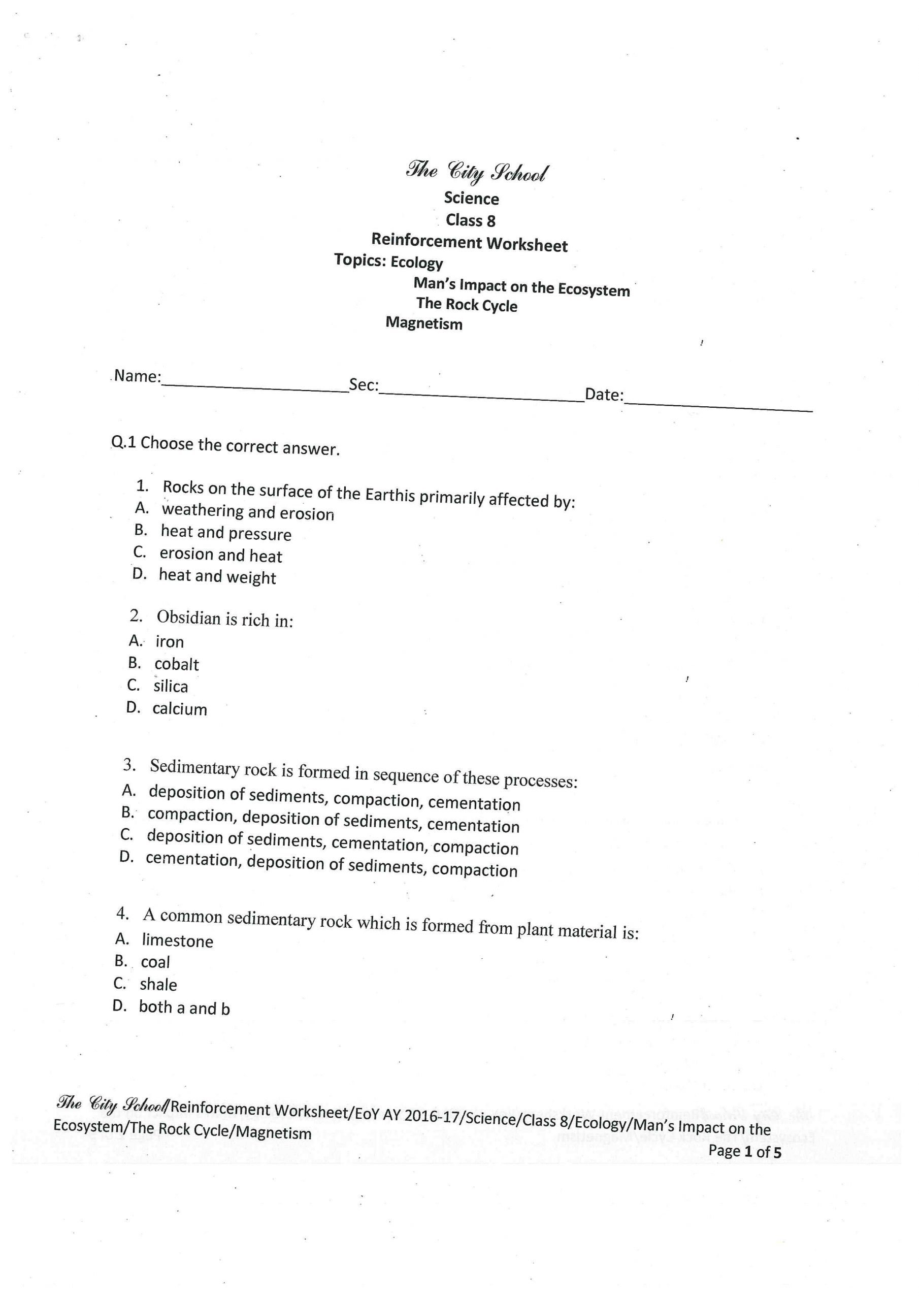 Science Worksheets for 8th Grade Science