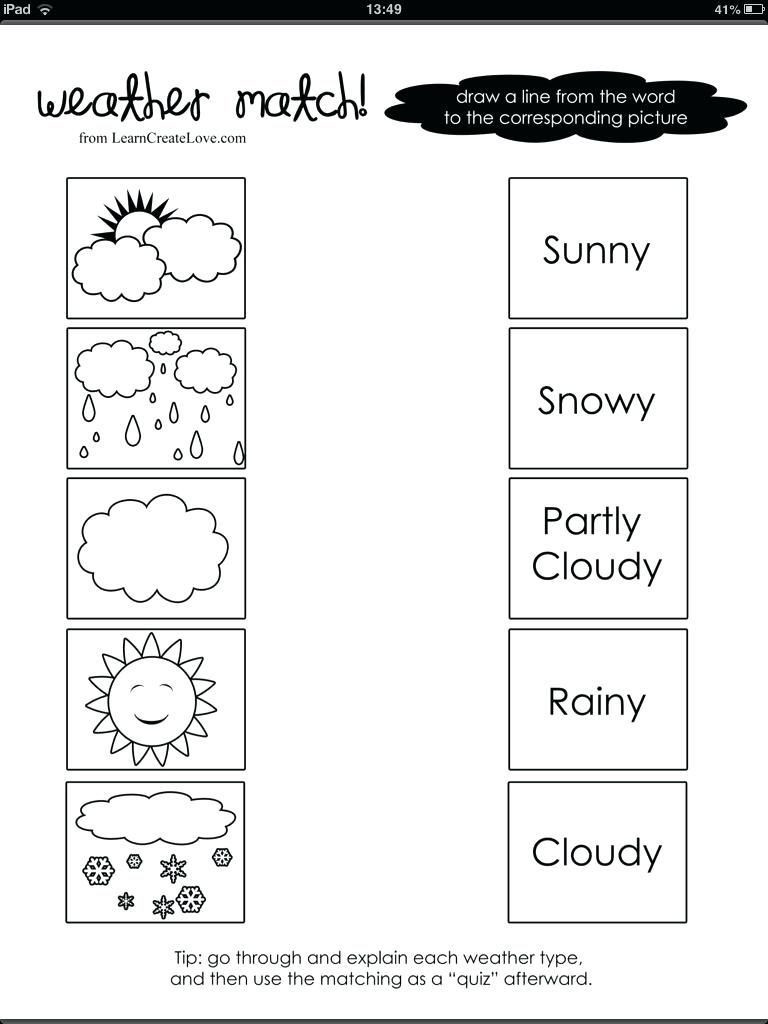 1st grade science worksheet in 2020