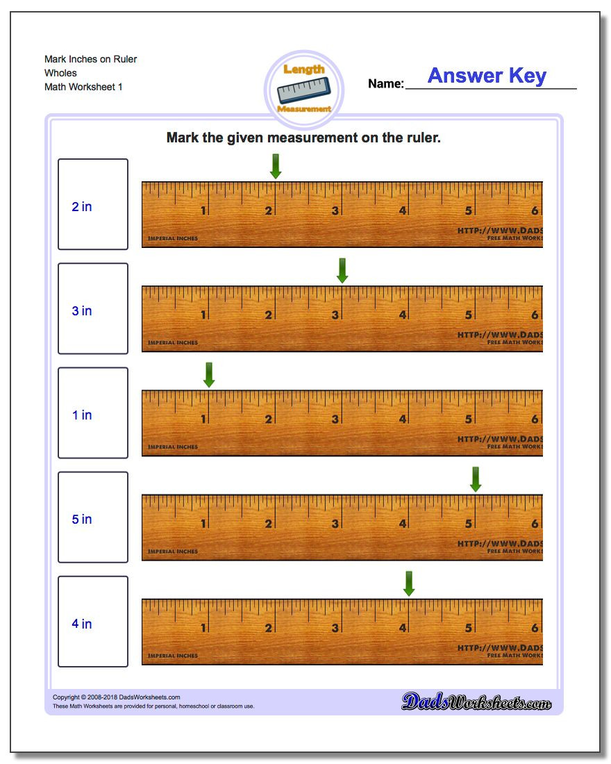 3rd Grade Measuring Worksheets Inches Measurement