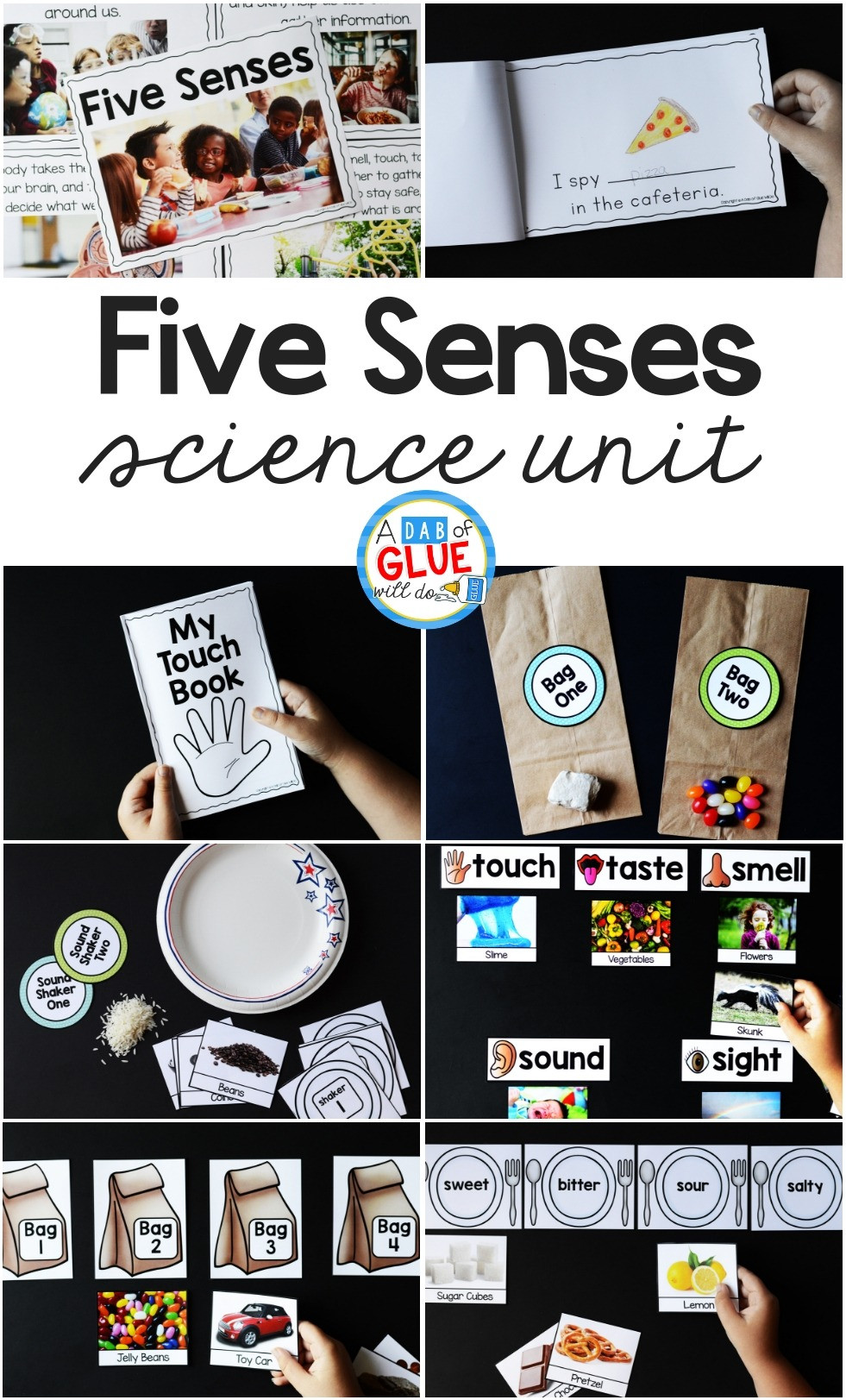 5 Senses Worksheet Preschool Five Senses Science Unit Hands On Learning Activity