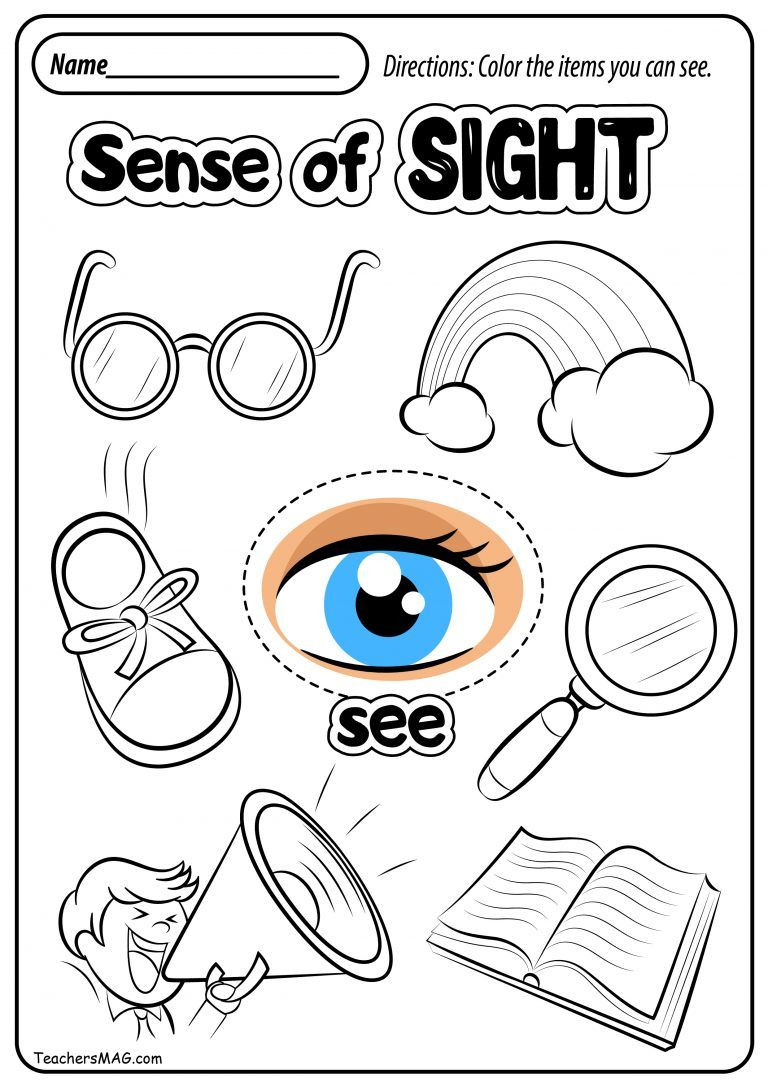 5 Senses Worksheet Preschool Free Five Senses Worksheets