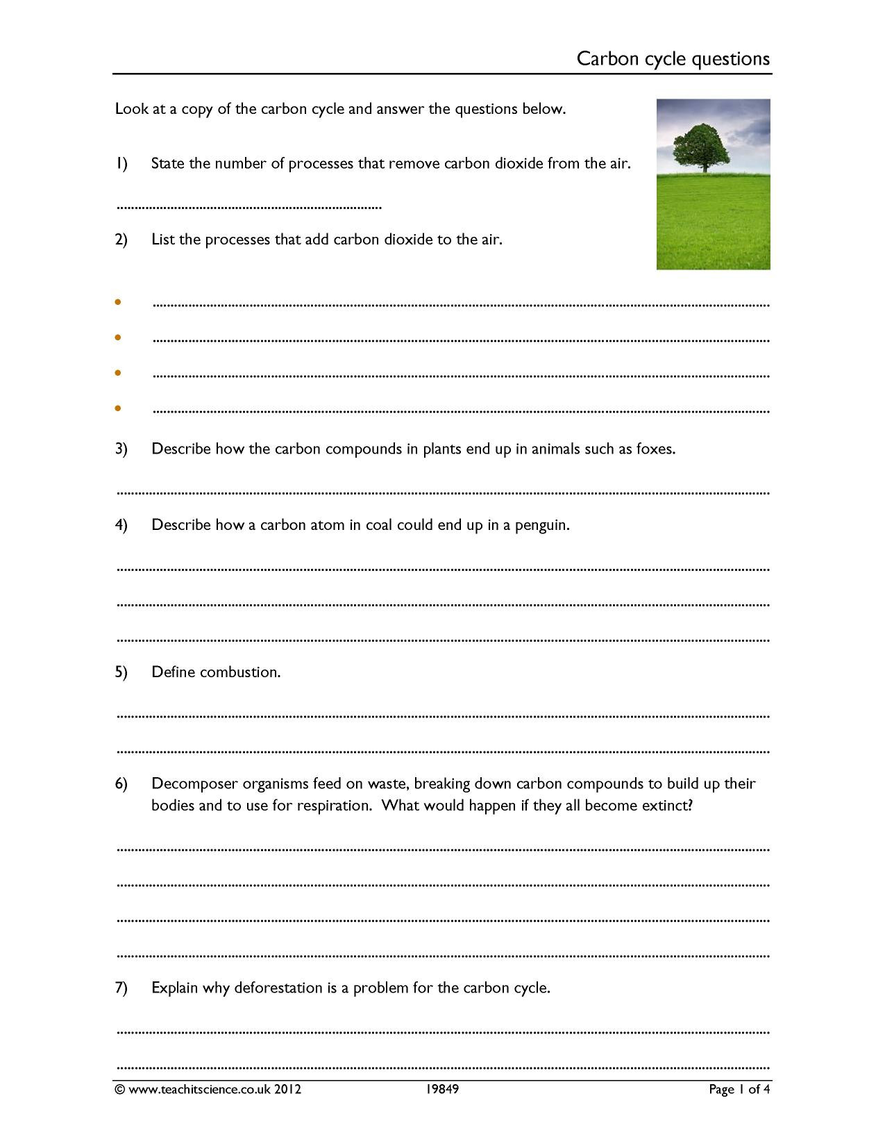 Geography Worksheets Middle School Pdf Carbon Cycle Questions Worksheet [pdf] Teachit Science