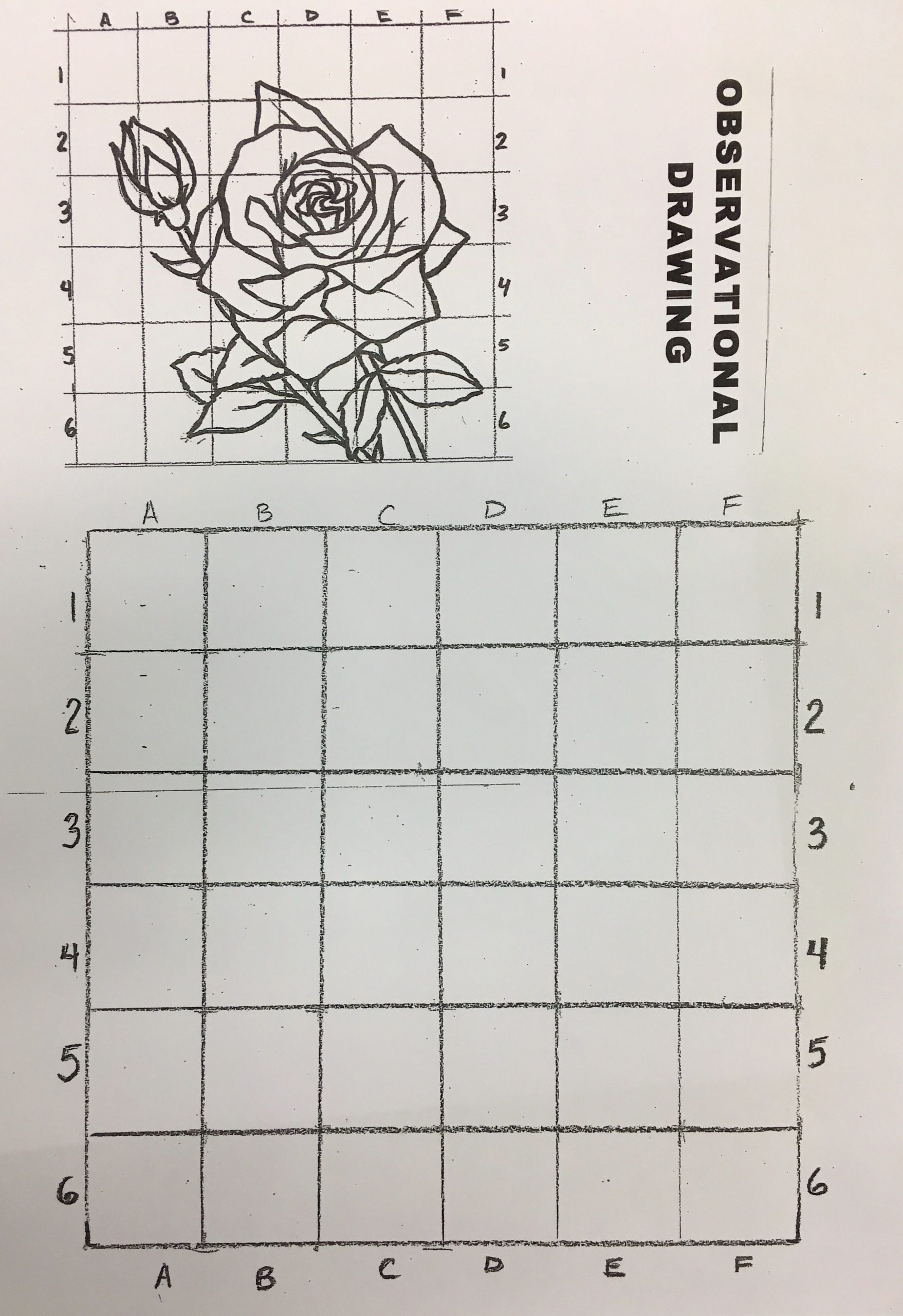 Grid Drawing Worksheets Middle School Challenging Drawing Exercise I Remember Doing This In