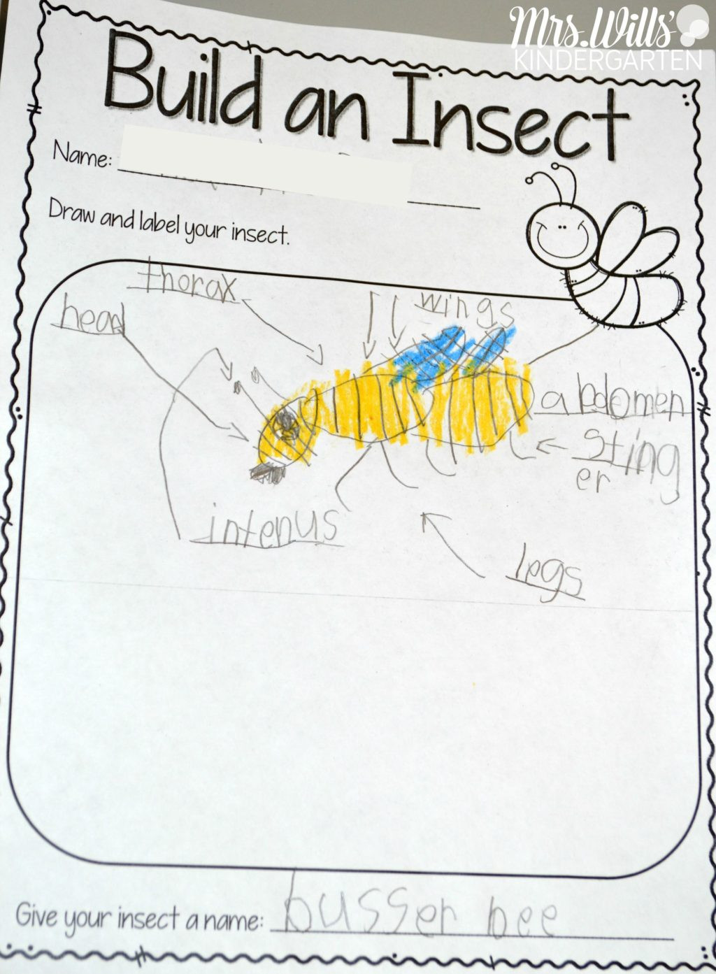 Insect Worksheets for First Grade Worksheet Worksheet Funivities for Kindergarten Students
