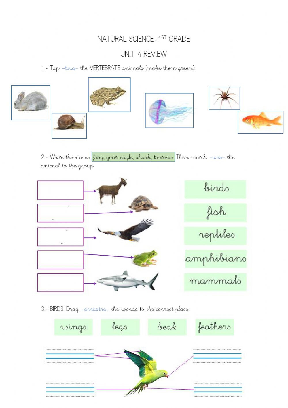 Mammals Worksheet First Grade 1st Grade Natural Unit 4 Interactive Worksheet