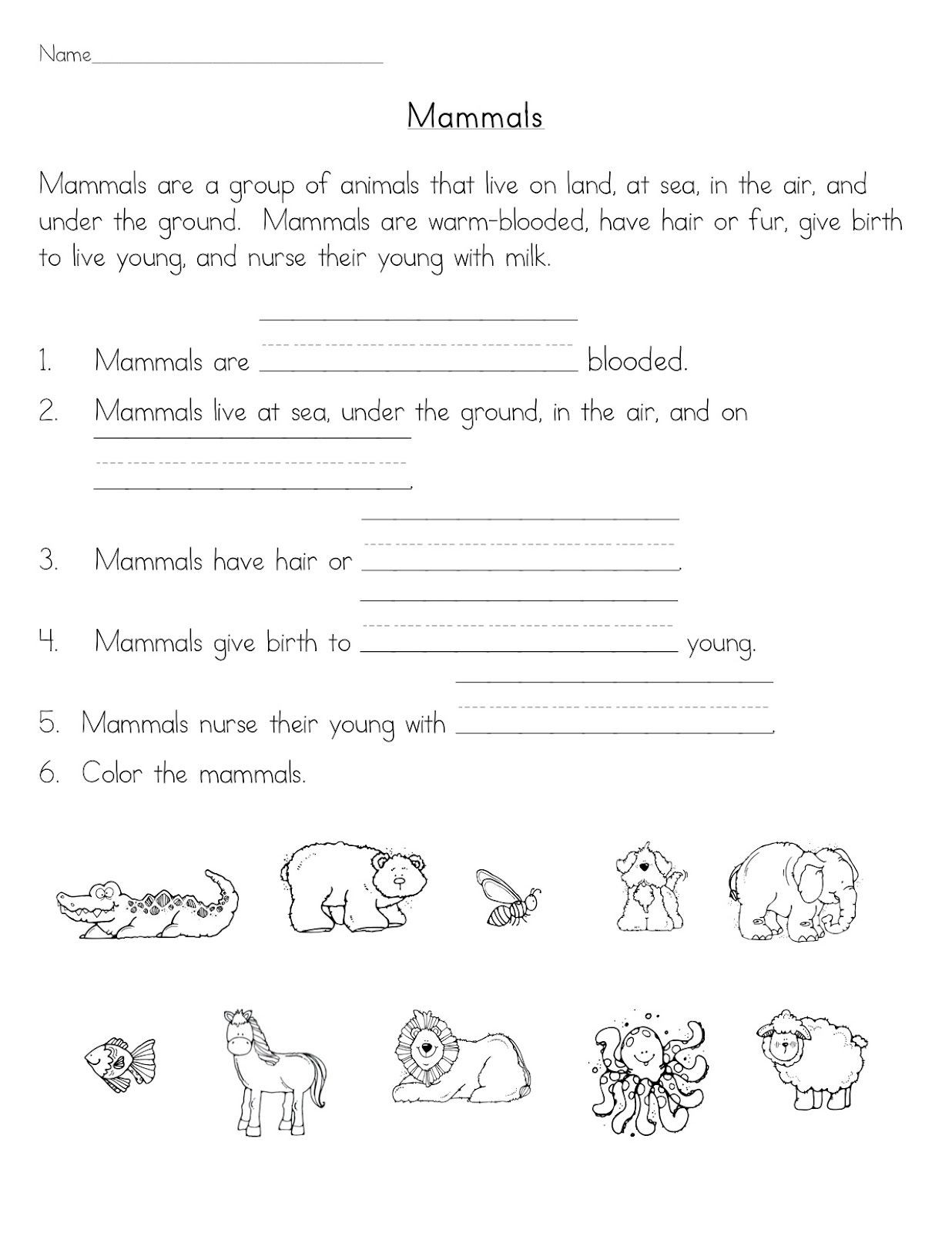 Mammals Worksheet First Grade Mammals