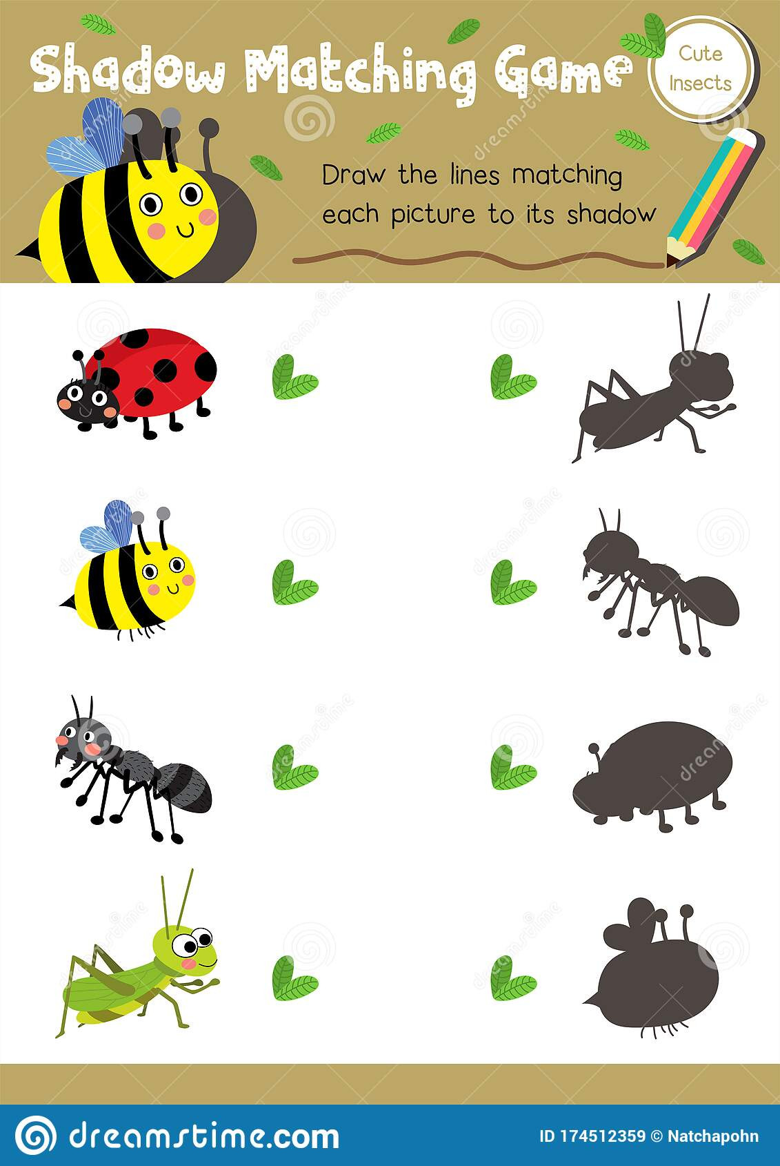 Preschool Bug Worksheets Shadow Matching Game Insect Bug Animal Stock Vector