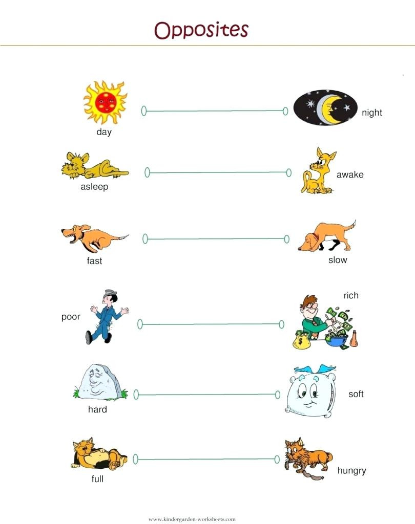 Preschool Opposites Worksheets Worksheet Kindergarten Inquiry Lesson Plans Fowl Words