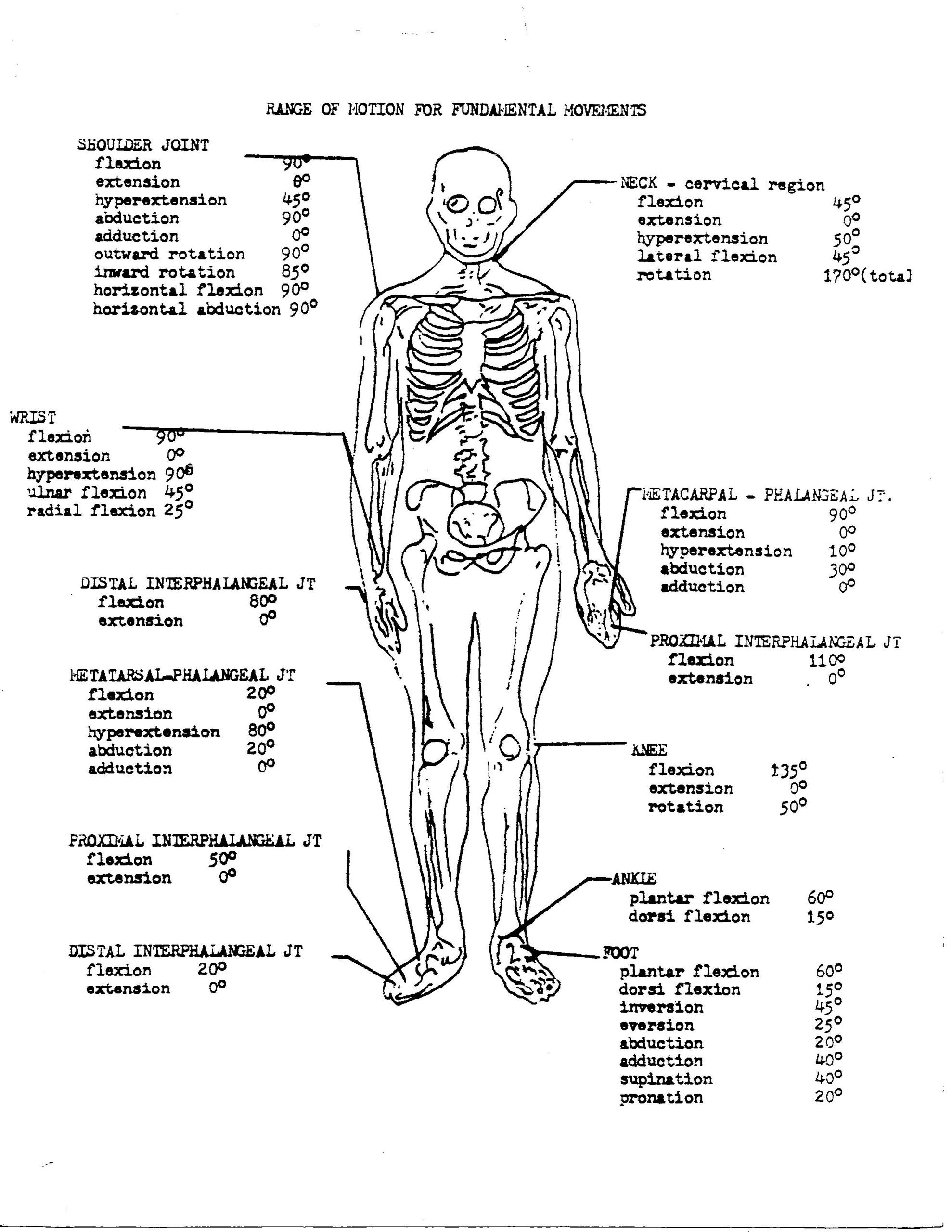 Printable Anatomy Worksheets Coloring Book 34d51fb0a1bf6e1ce8ce8a B64ca Free