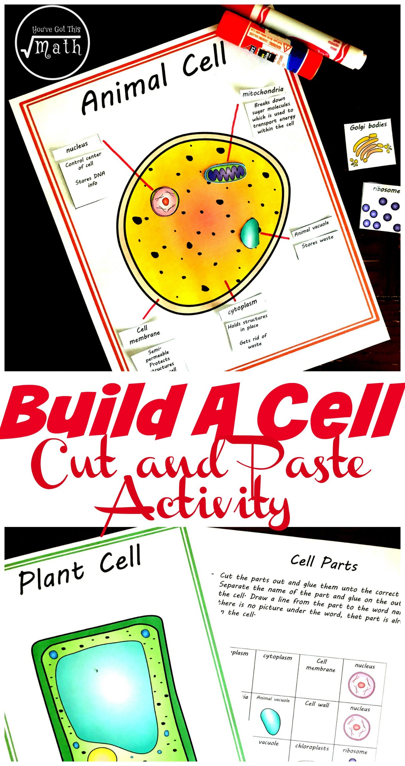 Printable Animal Cell Diagram Free Cut and Paste Animal and Plant Cell Worksheet