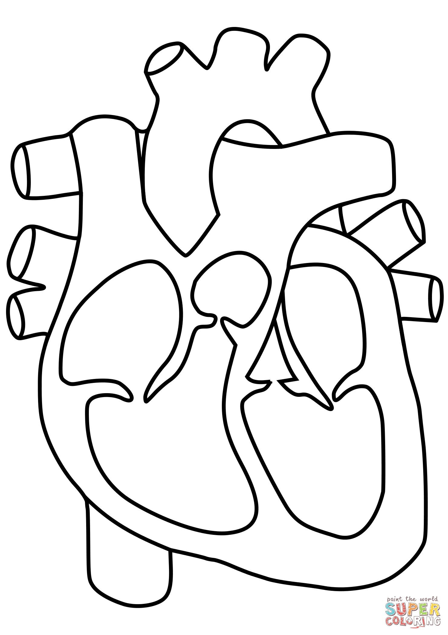 Printable Heart Diagram Human Heart Coloring Pages Human Heart Coloring Page Human