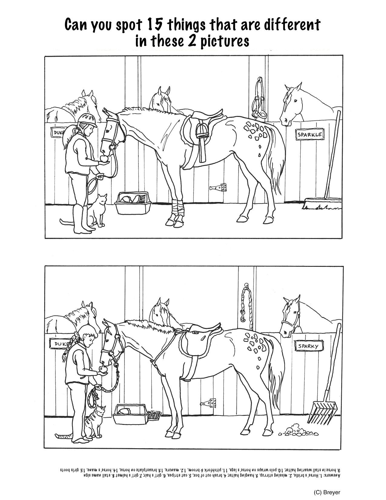 Printable Horse Anatomy Worksheets Horse Projects for Kids