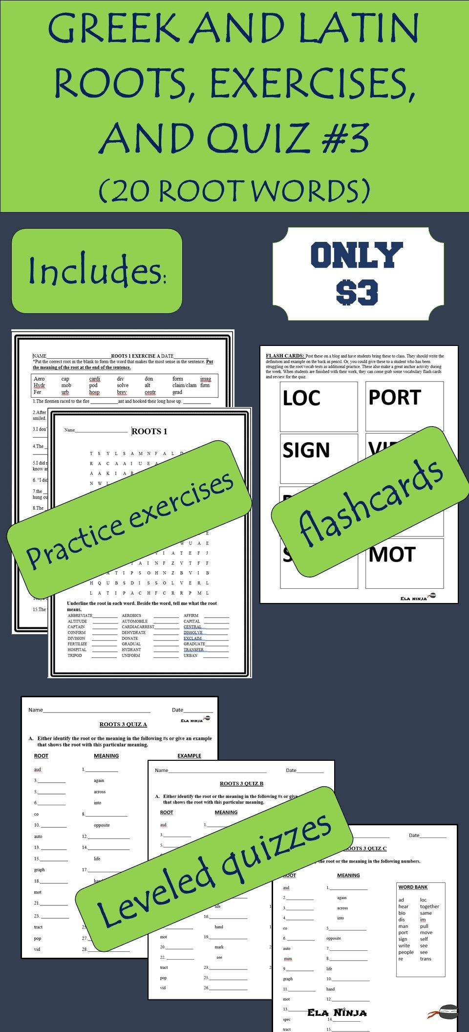 Root Word Worksheets Middle School Greek & Latin Root Words for Middle School and Hs 3