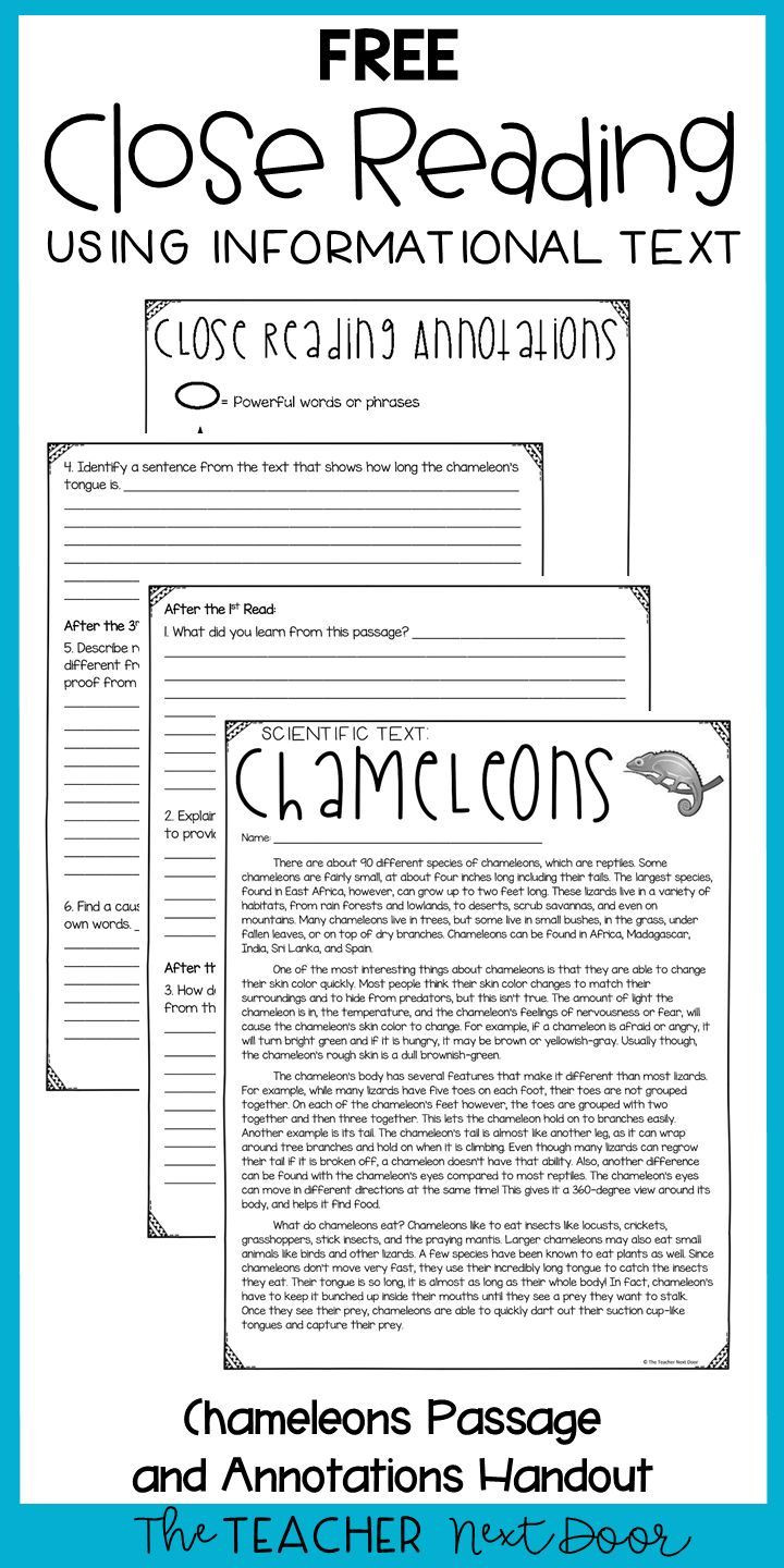 Text Evidence Worksheets 3rd Grade Close Reading Using Informational Text Freebie for 3rd Grade